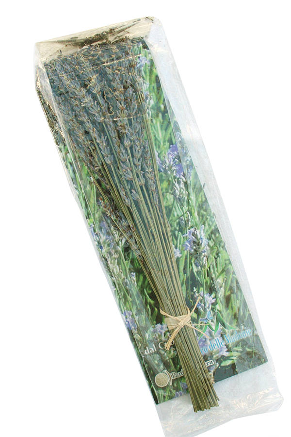 Organic Lavender on the stalk